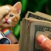 Cara Mendapat Uang dari Instagram dalam Waktu Kurang dari 3 Bulan