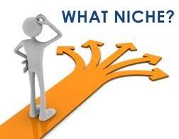 what niche next