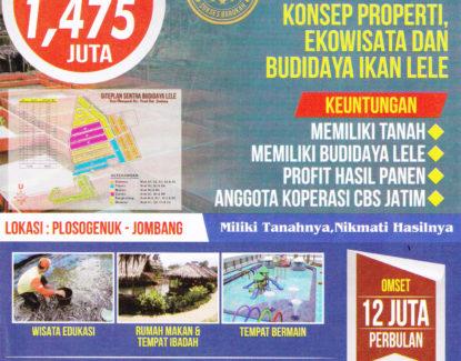 program apta daya kavling tanah budidaya lele 415x325 » Inilah 8 Peluang Usaha Ternak yang Potensial Dibudidayakan di Indonesia