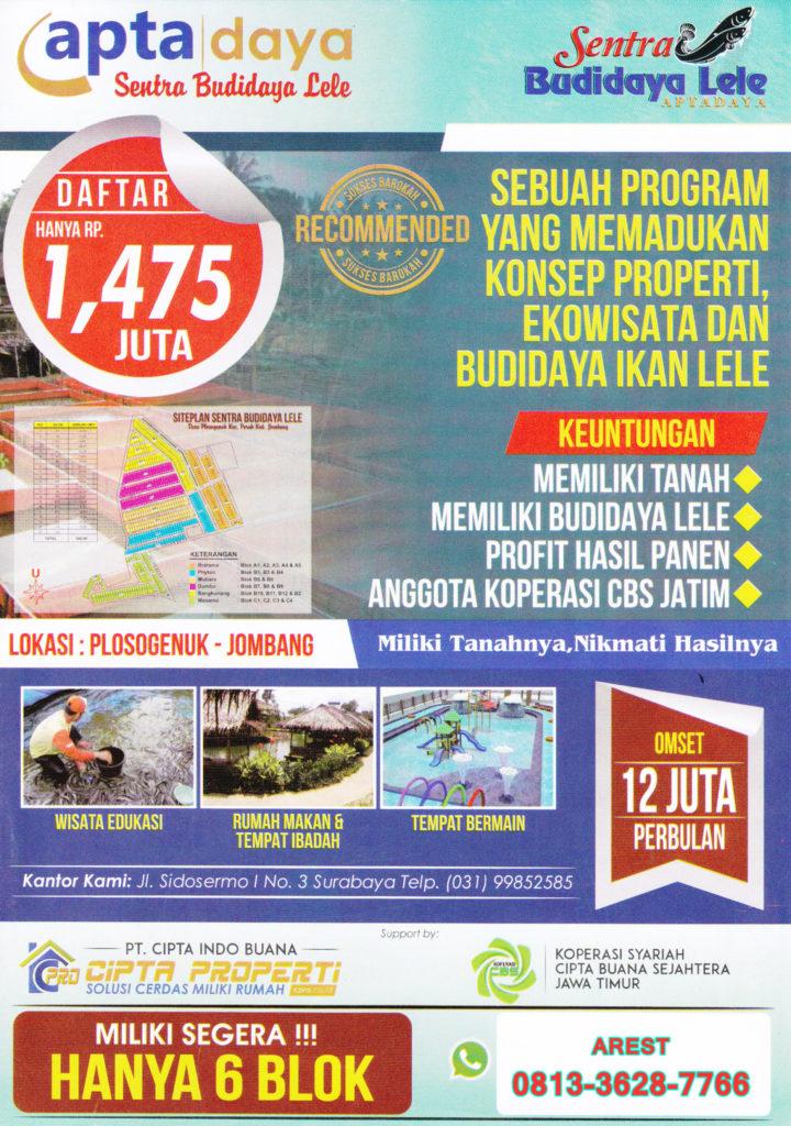 program apta daya kavling tanah budidaya lele 720x1024 » Inilah 8 Peluang Usaha Ternak yang Potensial Dibudidayakan di Indonesia
