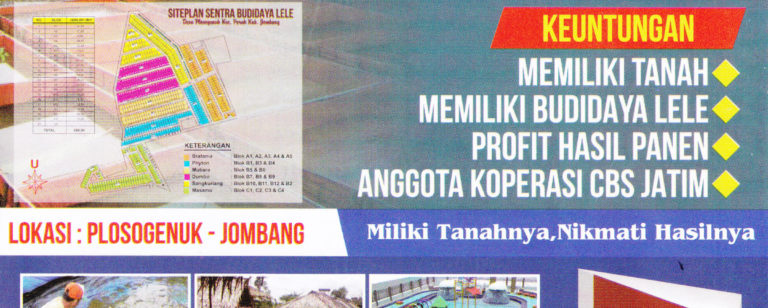 program apta daya kavling tanah budidaya lele 768x308 » Inilah 8 Peluang Usaha Ternak yang Potensial Dibudidayakan di Indonesia